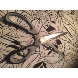 Orblue Kitchen Scissors