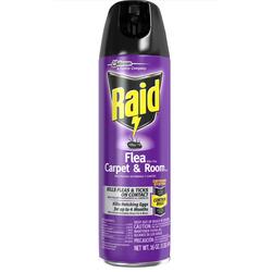 Raid flea carpet & room