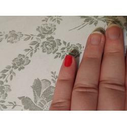 Formula X nail polish in Wingwoman