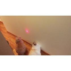 Frolicat Bolt Laser Cat Toy