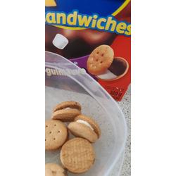 Ritz bits s'mores
