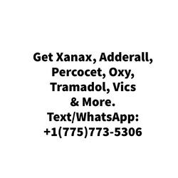 MotriMAX 12 hour