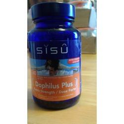 Sisu Probiotics Extra Strength