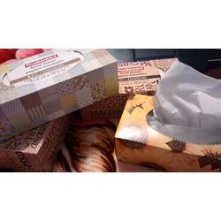 Pharmasave 2 Ply Facial Tissues
