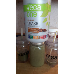 Vega One Nutritional Shake Mocha Protein Powder