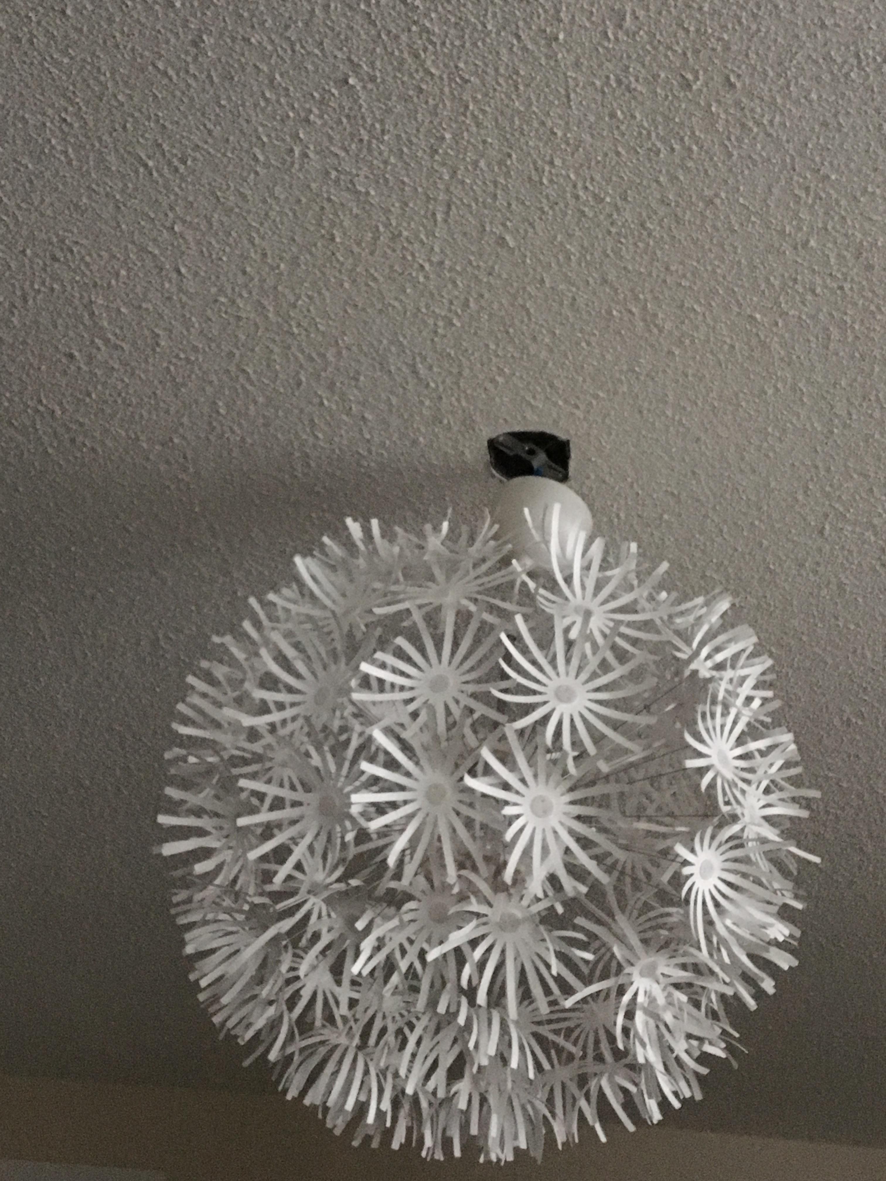 ikea ps maskros ceiling light reviews in lighting & fans - chickadvisor