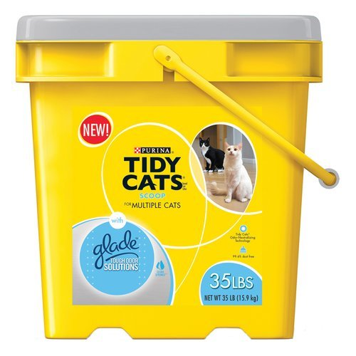 Tidy Cats With Glade Review