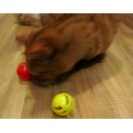 Hartz Just for Cats Midnight Crazies Cat Toys