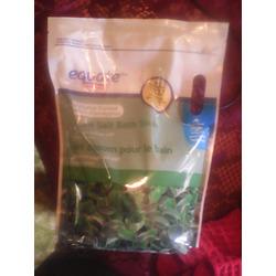Equate Epson eucalyptus salts