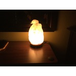 Himalayan Salt Crystal Lamp, Hand Carved Natural Shape