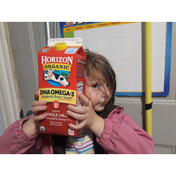 Horizon Organic Milk Boxes