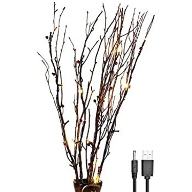 Best Lighted Twigs Home Decorating Images - Home Design Ideas ...