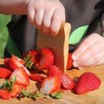 Coupe légumes pour enfant de l'atelier Saint-Cerf