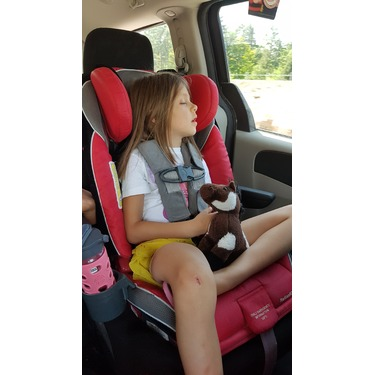 Diono Radian RXT Reviews In Car Seats