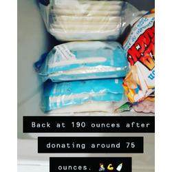 Ziploc brand Freezer Bags Extra Large