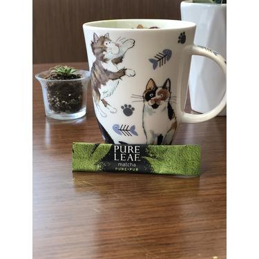 Pure Leaf Pure Matcha tea sachets