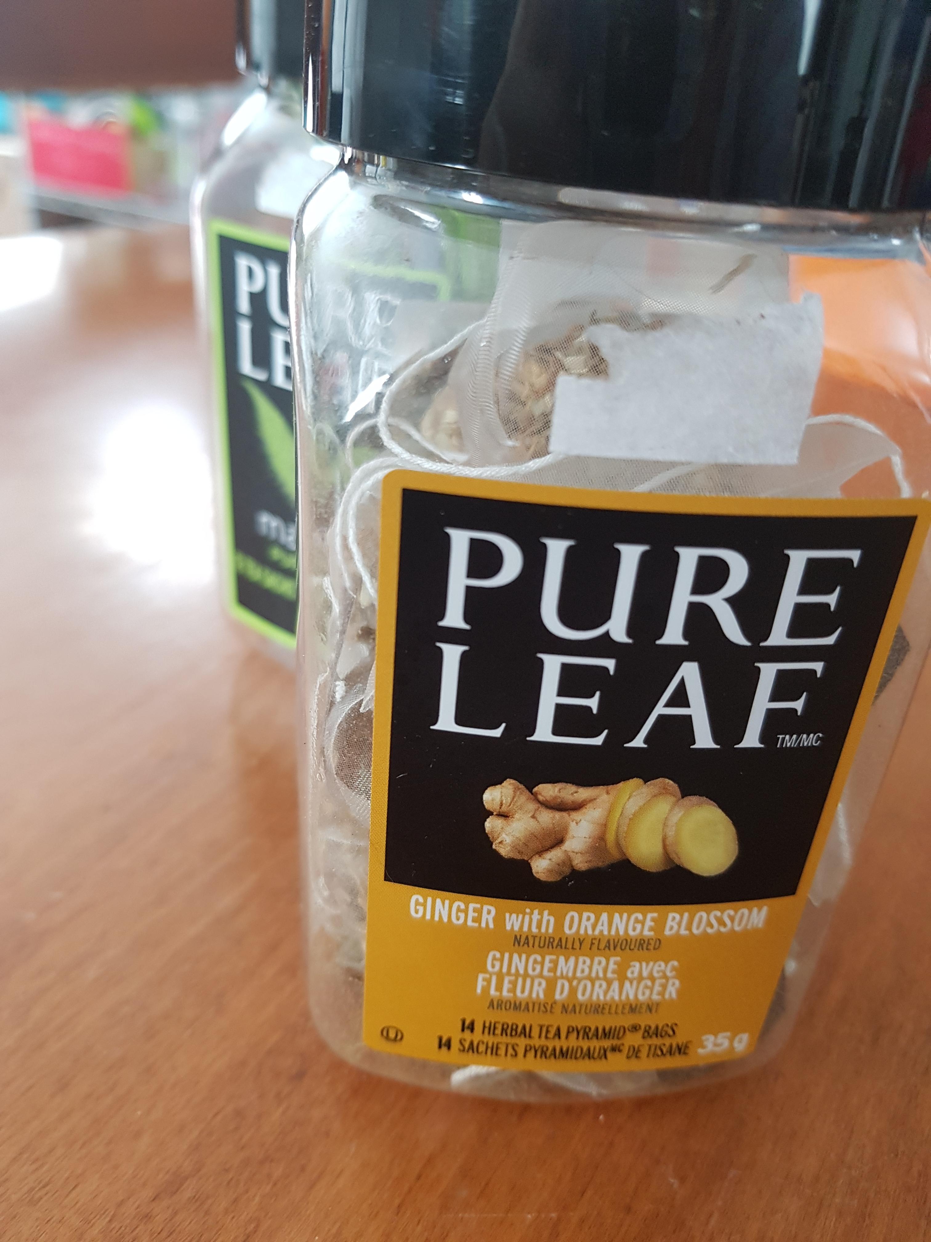 Pure Leaf Ginger with Orange Blossom pyramid tea bags ...
