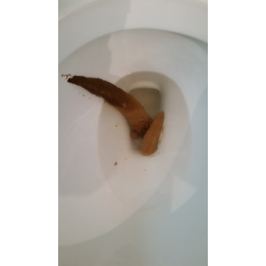Swiss Chalet Frozen Chicken Pot Pie
