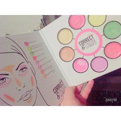 Ellen Tracy Correct & Conquer Colour & Conceal Palette
