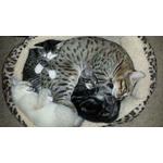 Grreat Choice Cat Cuddler Bed