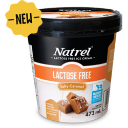 Natrel Salty Caramel Lactose Free Ice Cream