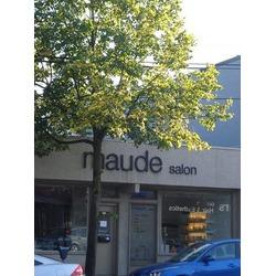 Maude Salon