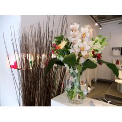 Del Monaco Hair Studio