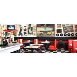 Route 42 Diner and Dairy Bar  ~~Windsor ON