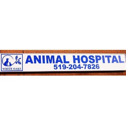 White Oaks Animal Hospital, London, Ontario