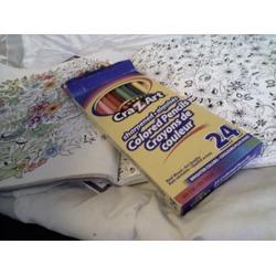 Crayola Cra-Z-Art 24 Bright Colours