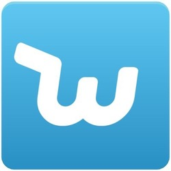 Wish online shopping site